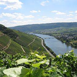 View Valleys, Vineyards and Medieval Towns When Cruising the Mosel River