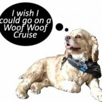 Cruises that are Cat and Dog Friendly