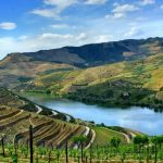 View a UNESCO World Heritage Site on a Douro River Cruise