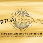 Virtual Cruises? Travel the World from Your Home with Lindblad!